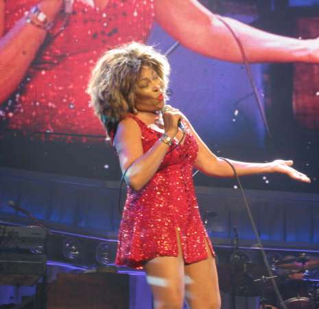 Tina Turner Sparkling Costume Tina Turner Dress Tina Turner Outfit