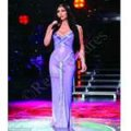 Cher Sparkling Stage Evening Gown / Costume