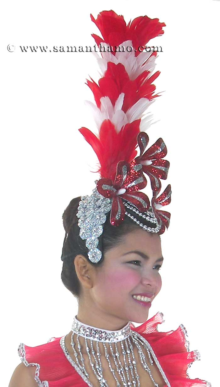 https://michaeljacksoncelebrityclothing.com/cabaret-headdresses/HD174-head-dress-b.jpg