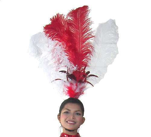 Las Vegas Show Girl Feather Headdress - In Any Colour - HD159 - Click Image to Close