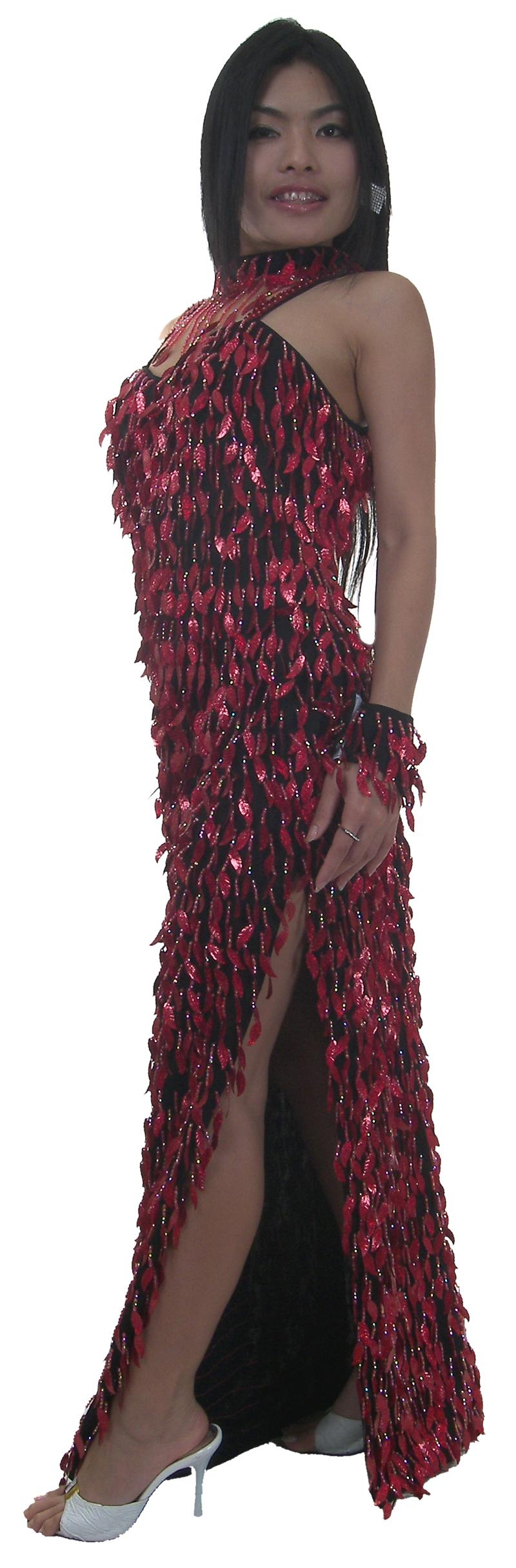https://michaeljacksoncelebrityclothing.com/sequin-ball-gown/TM2013-long-sequin-fringe-latin-dress-b.jpg