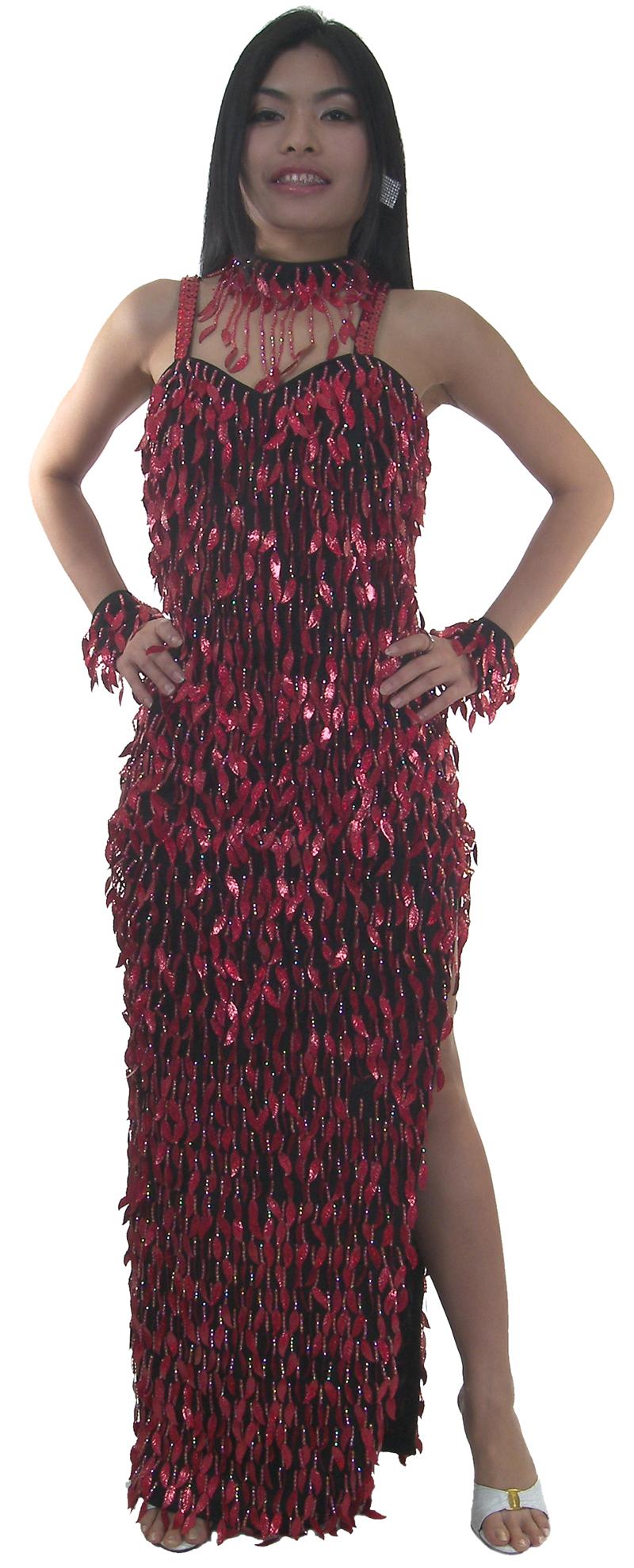 https://michaeljacksoncelebrityclothing.com/sequin-ball-gown/TM2013-long-sequin-fringe-latin-dress.jpg