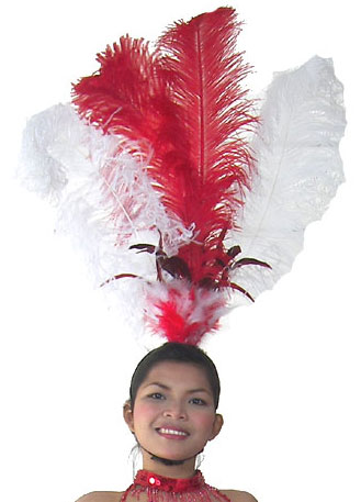 https://michaeljacksoncelebrityclothing.com/show-cabaret-circus/STC2049-vegas-showgirl-feather-headpiece.jpg