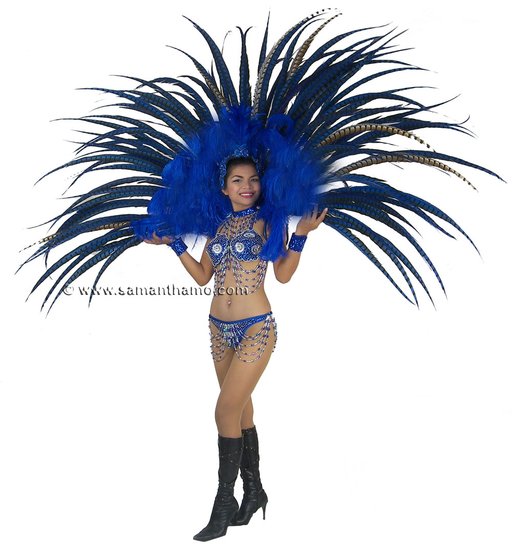 https://michaeljacksoncelebrityclothing.com/stage-cabaret-circus/RT03-las-vegas-show-girl-blue-feather-back-harness-costume.jpg