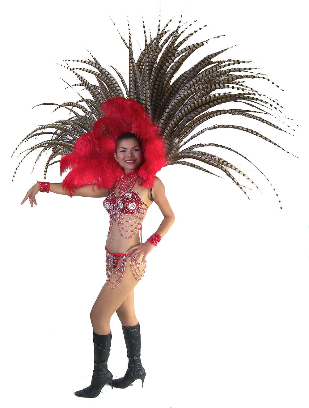 https://michaeljacksoncelebrityclothing.com/stage-cabaret-circus/RT05-feather-harness-costume.jpg